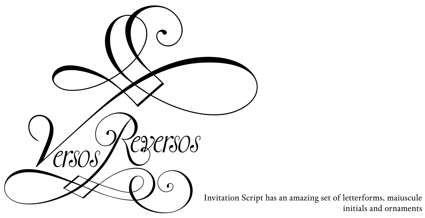 Invitation Script Pack (4 fonts) example image 15