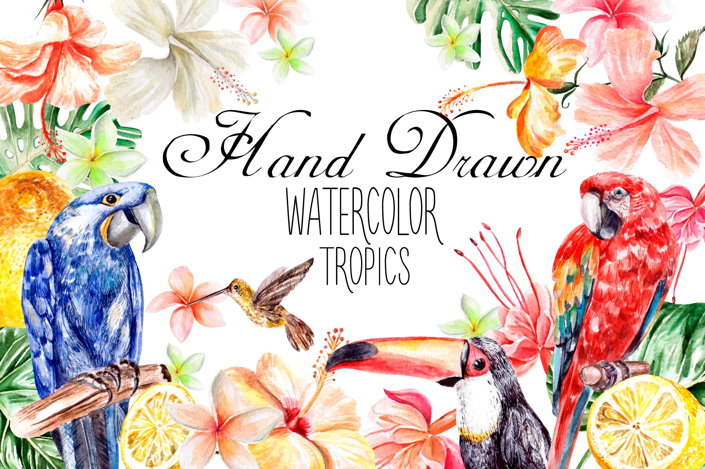 Hand Drawn watercolor TROPICS example image 1
