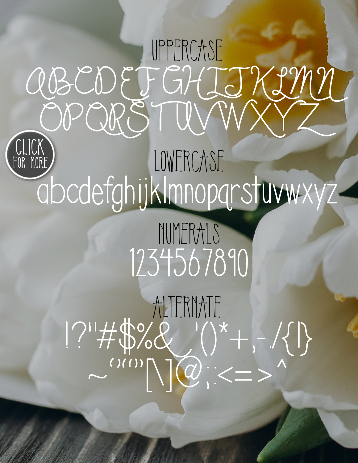 You & Me Typeface example image 2