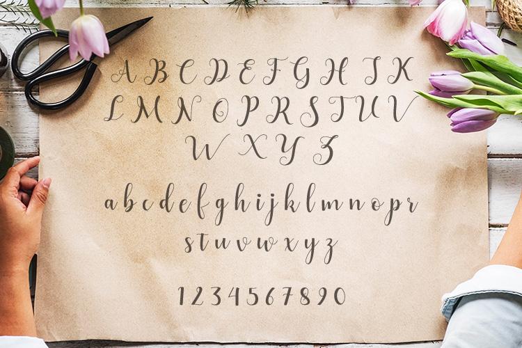 Alyshia Script example image 2