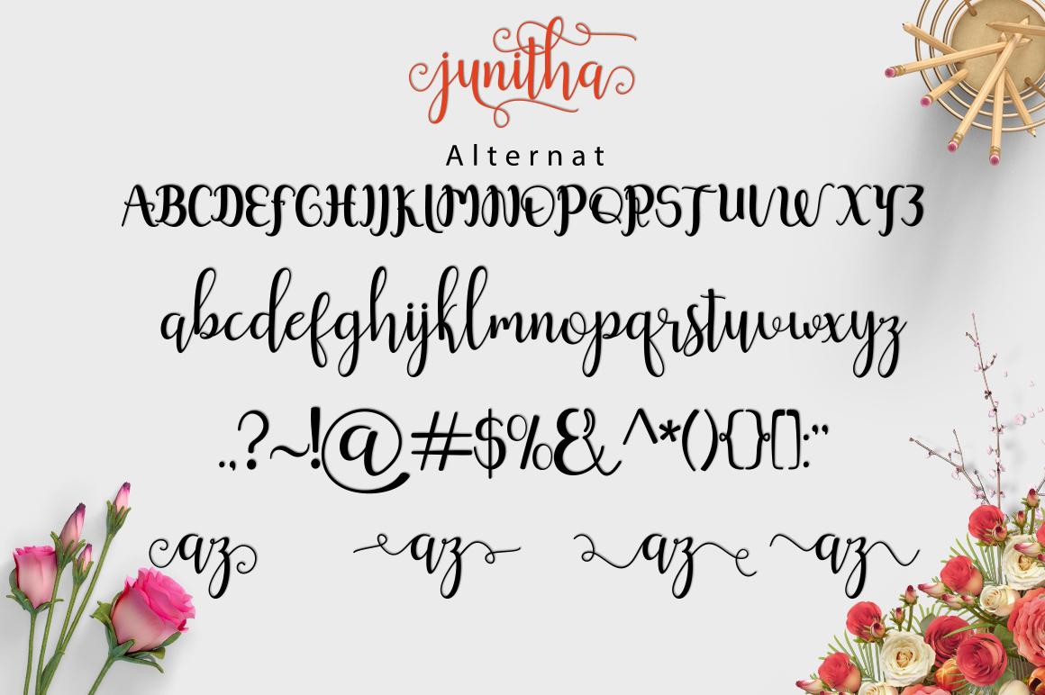 Junitha Script example image 2