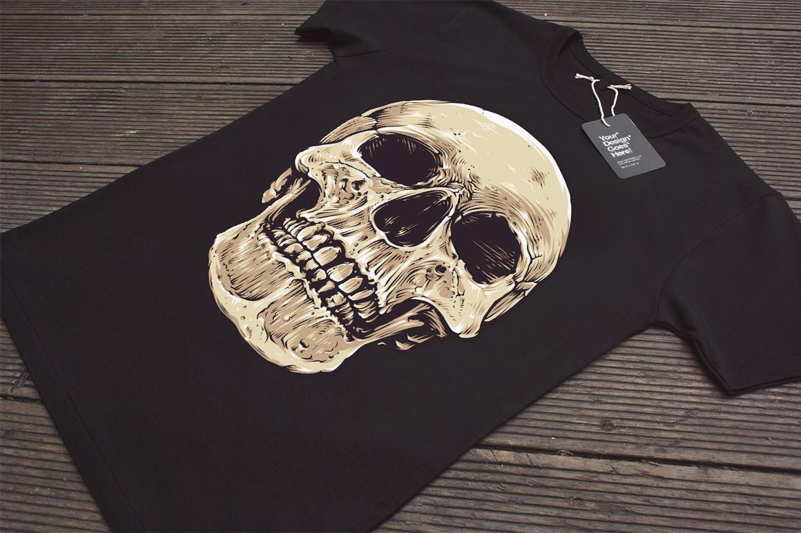 Anatomic Skulls | Vector Pack example image 8
