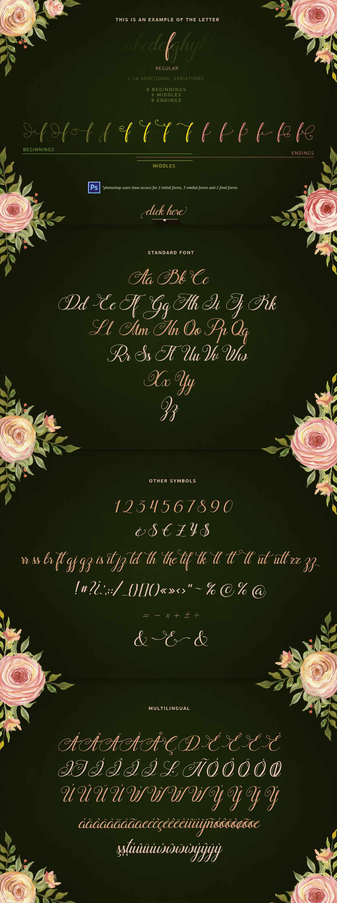 Flamingo - formal script example image 4