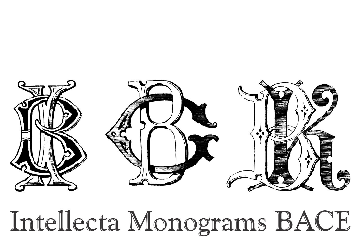 Intellecta Monograms BACE example image 4
