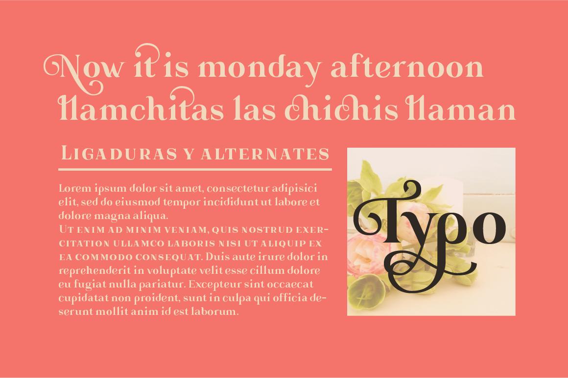 Gorni Typeface example image 4