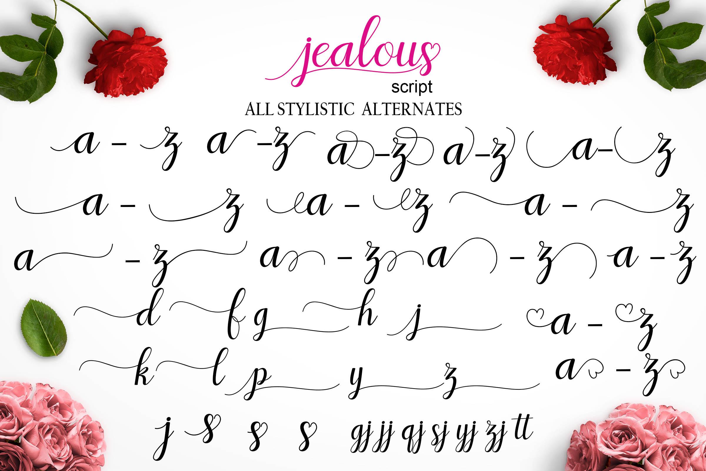 Jealous Script  example image 11