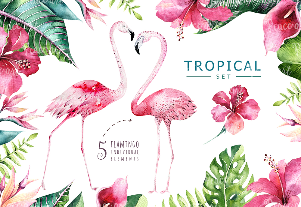 Tropical set II. Flamingo collection example image 4