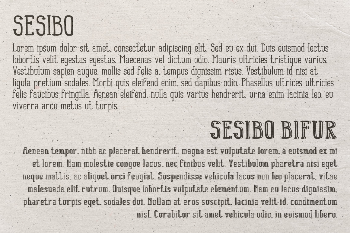 Sesibo Fonts example image 2