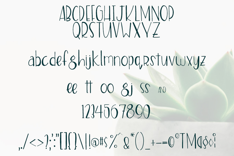 Stella Font example image 2