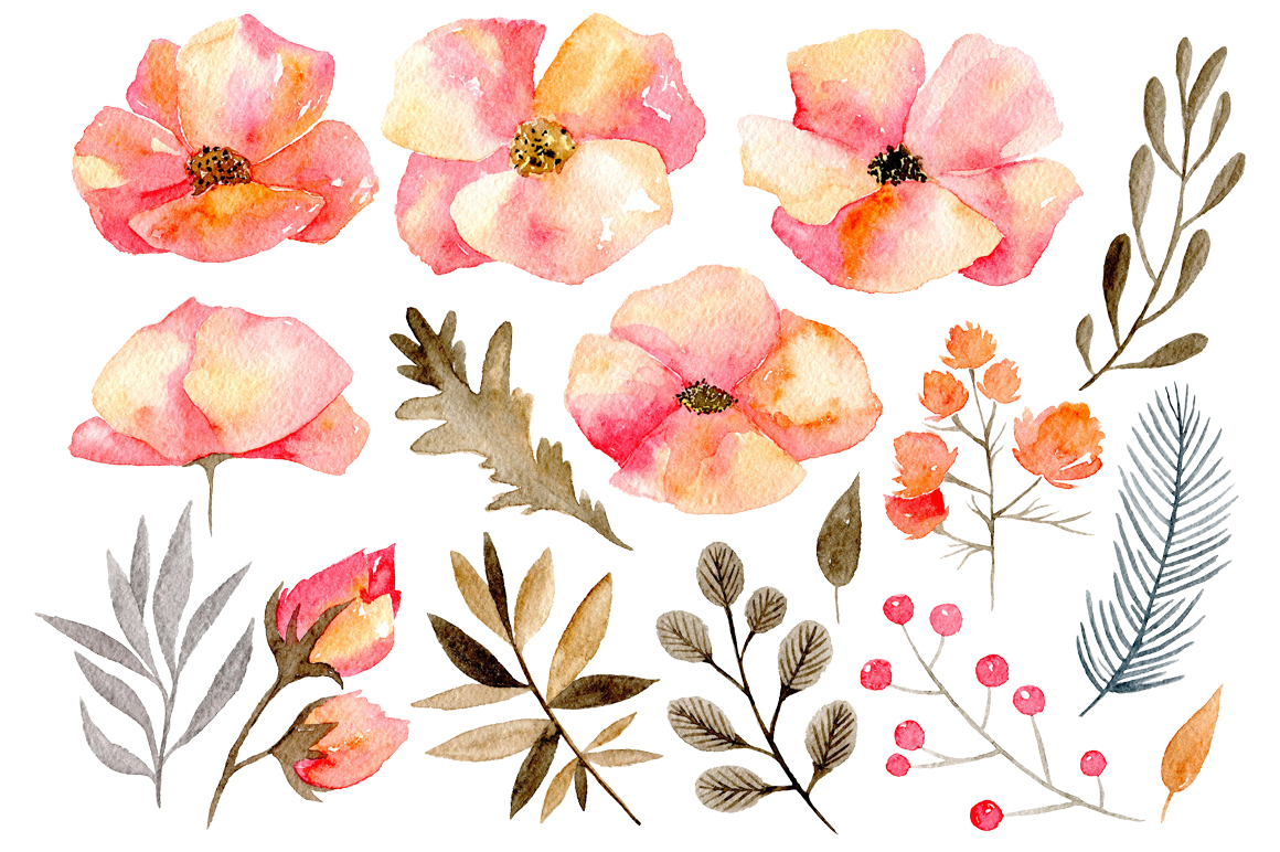 Gentle watercolor flowers, 16 png by Wa | Design Bundles