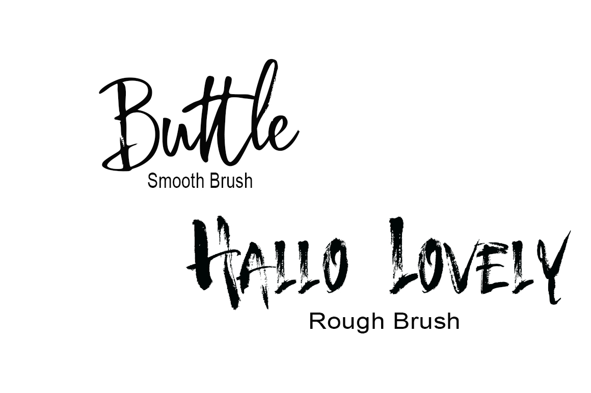 Calligraphy Font Bundles example image 9