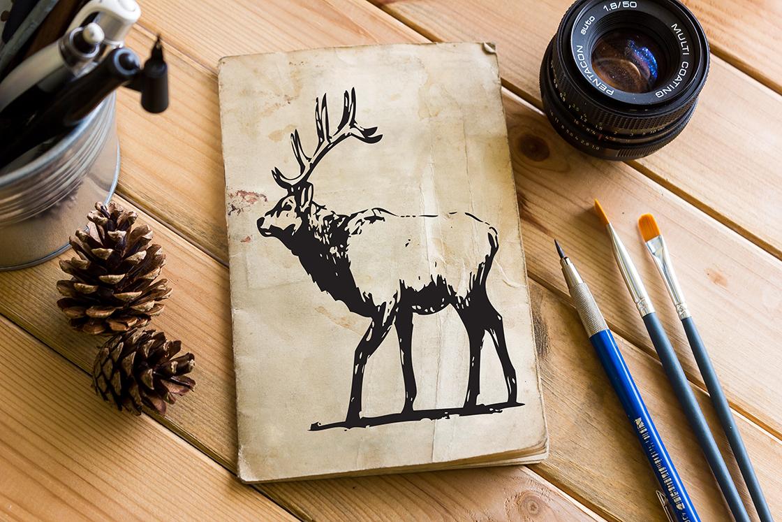 Hand-drawn wild animals example image 3