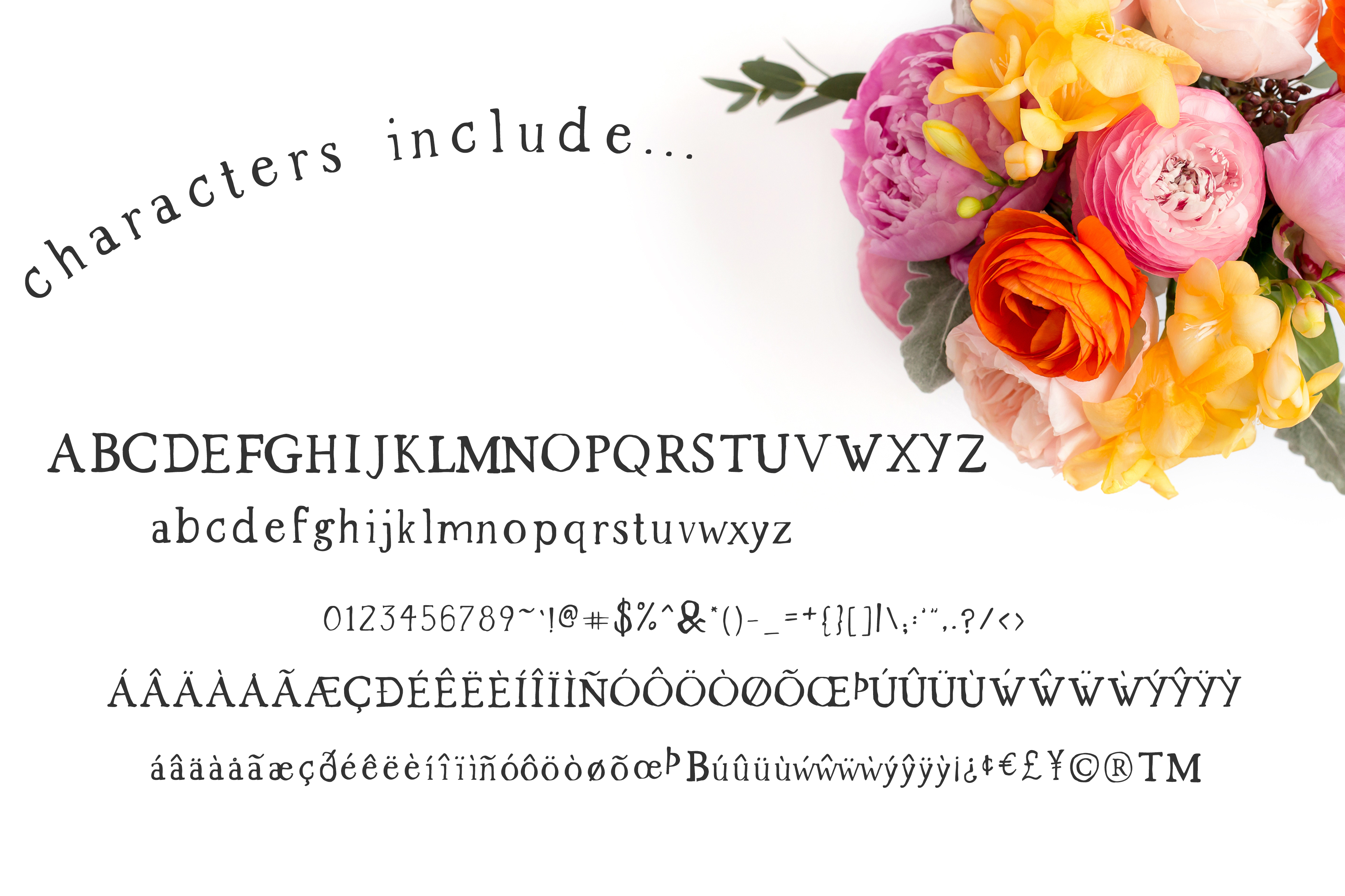 Spring Market - Rustic Serif Font example image 2