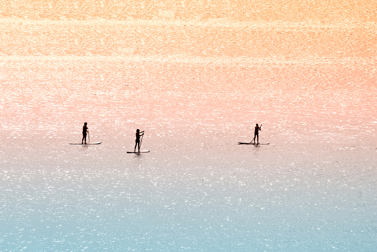 Standup paddle surfers example image 2