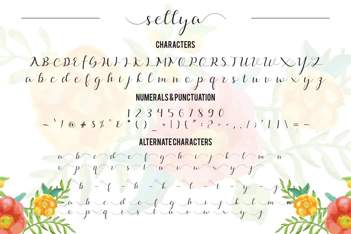 sellya script example image 7