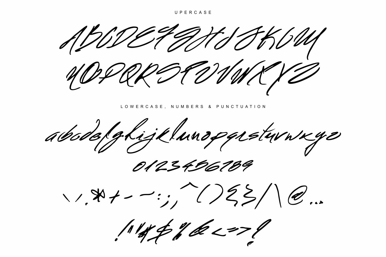 Mr. Roosevelt Handwritten example image 6