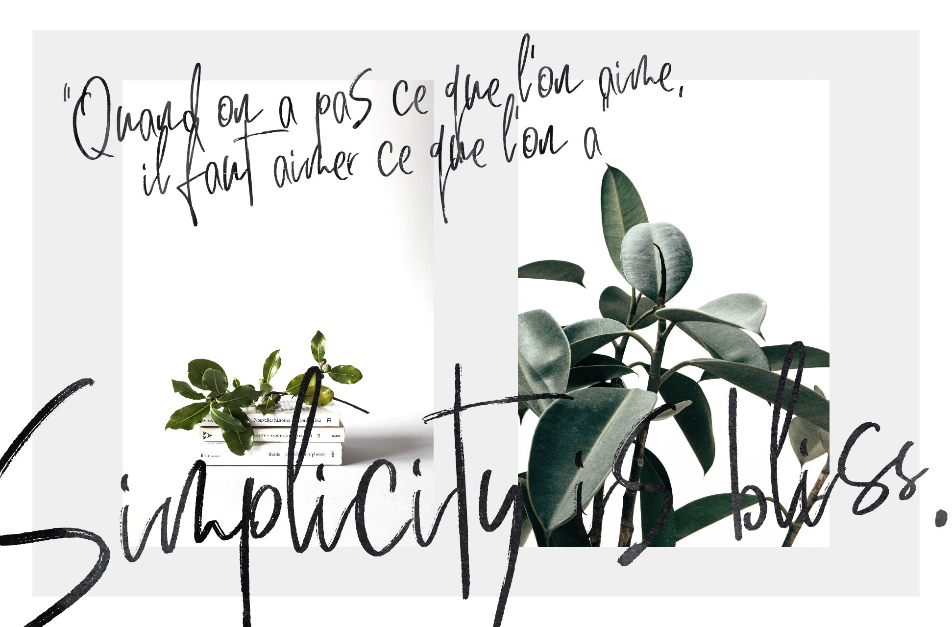 Unconditionally | Signature Script example image 11