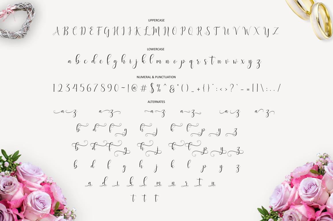 Delight Script | 4 Font example image 10
