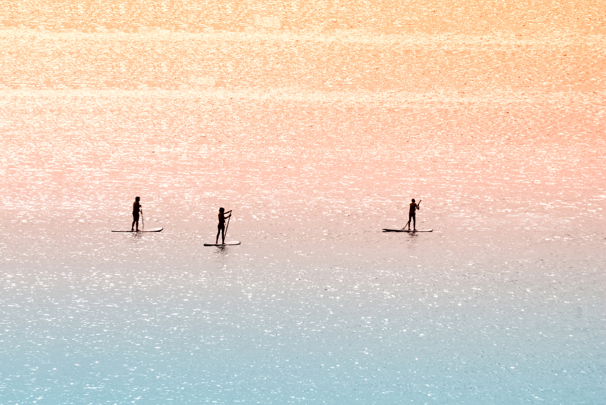 Standup paddle surfers example image 1