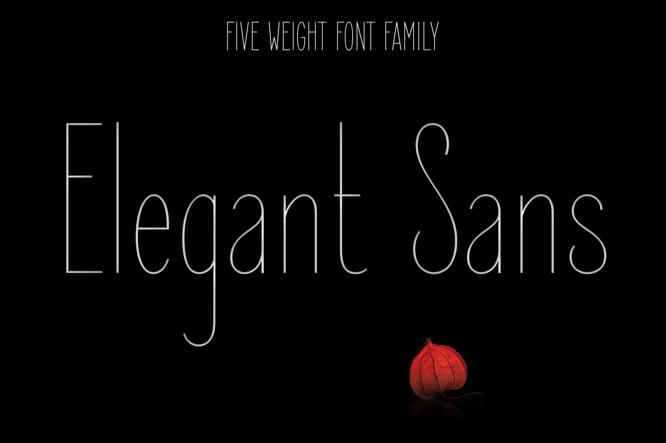 Elegant Sans Font Family example image 1