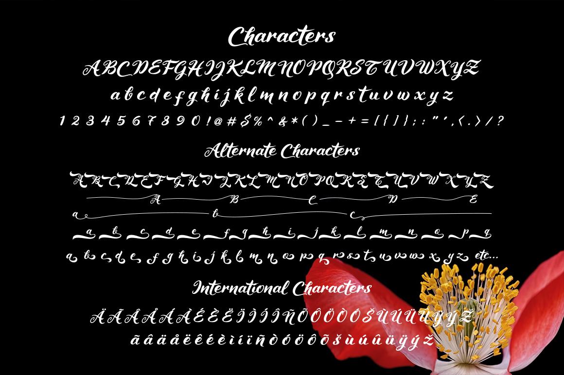 Maheera Font example image 11