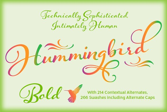 Hummingbird Bold example image 32