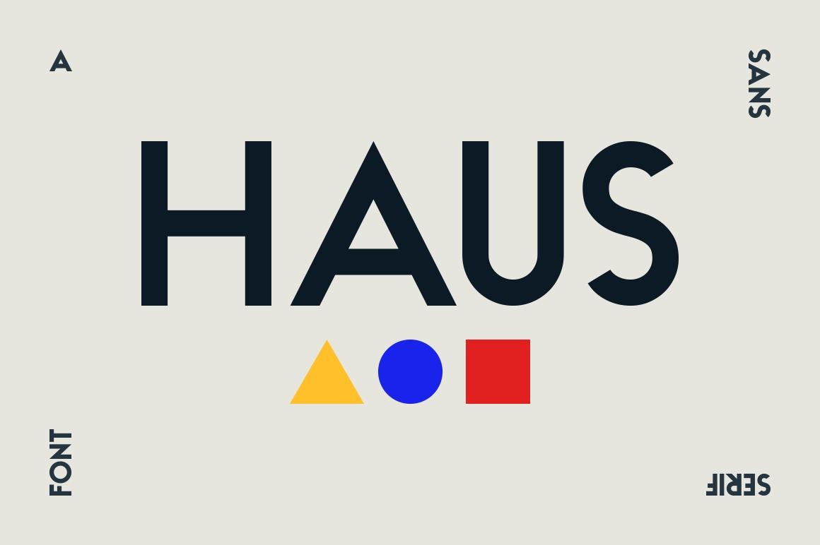 HAUS Sans - Family example image 1