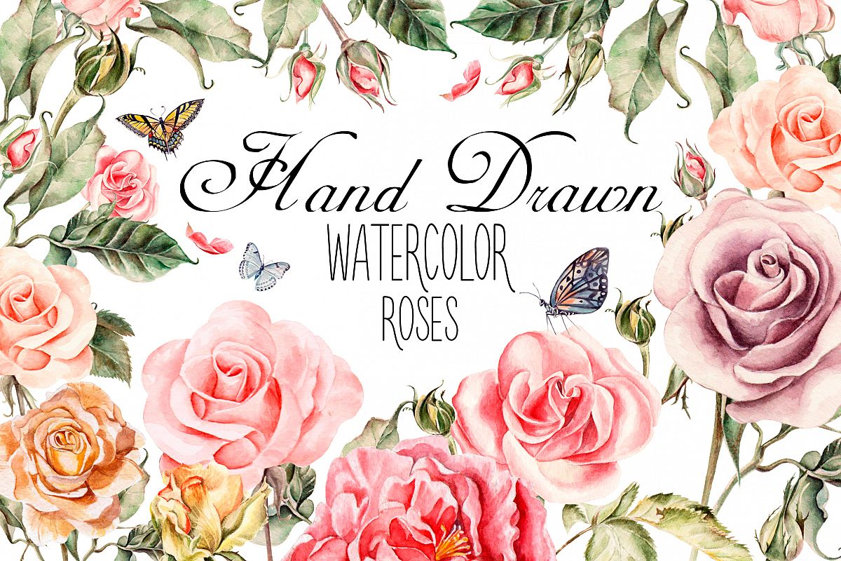 Hand drawn watercolor roses example image