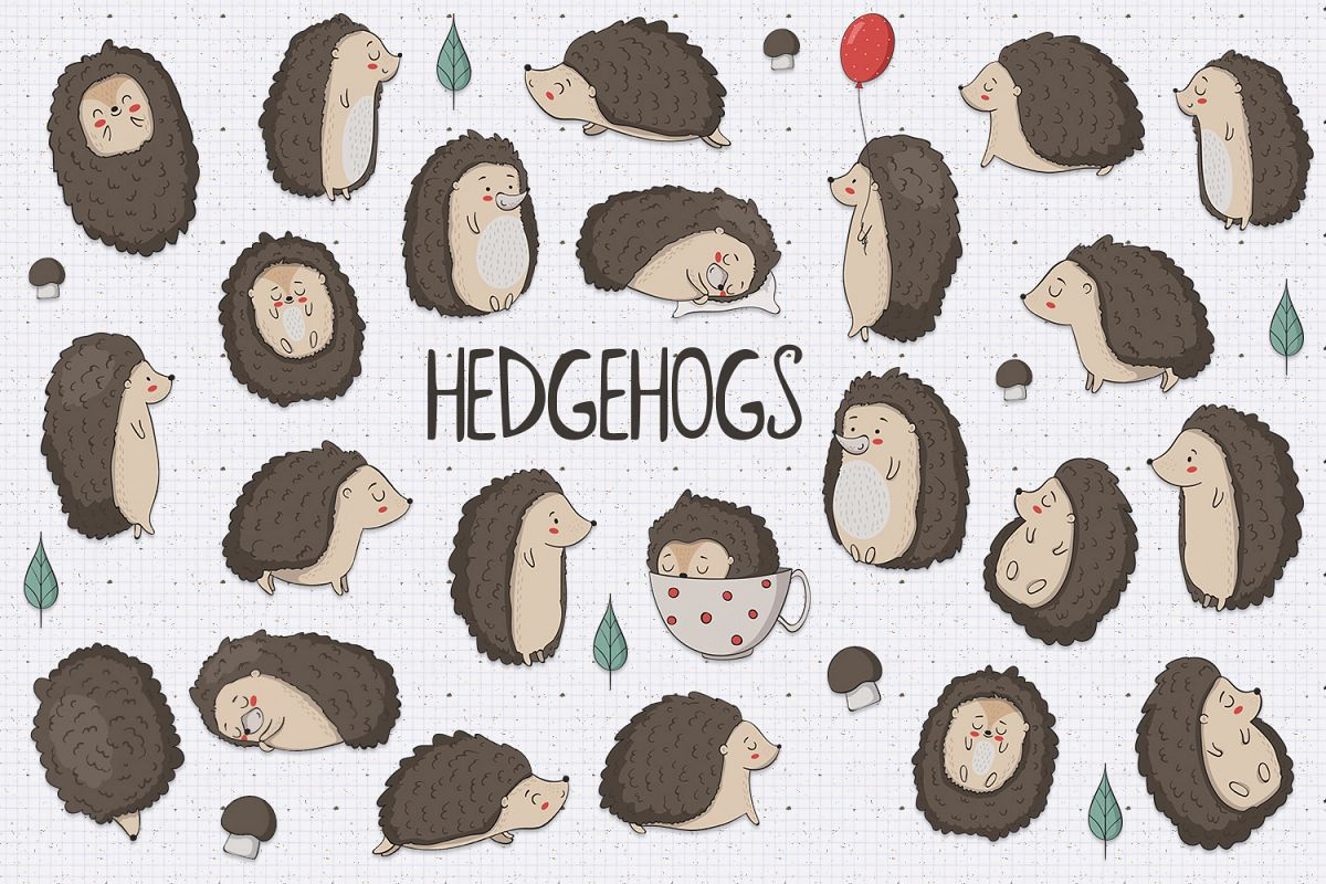 Hedgehogs example image