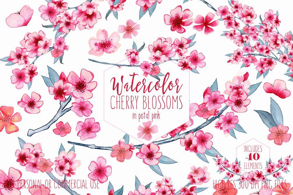 watercolor cherry blossoms clipart comm design bundles rh designbundles net clipart for commercial use free public domain clipart for commercial use