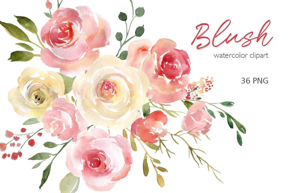 Blush Watercolor Flowers Roses Peony Pn Design Bundles