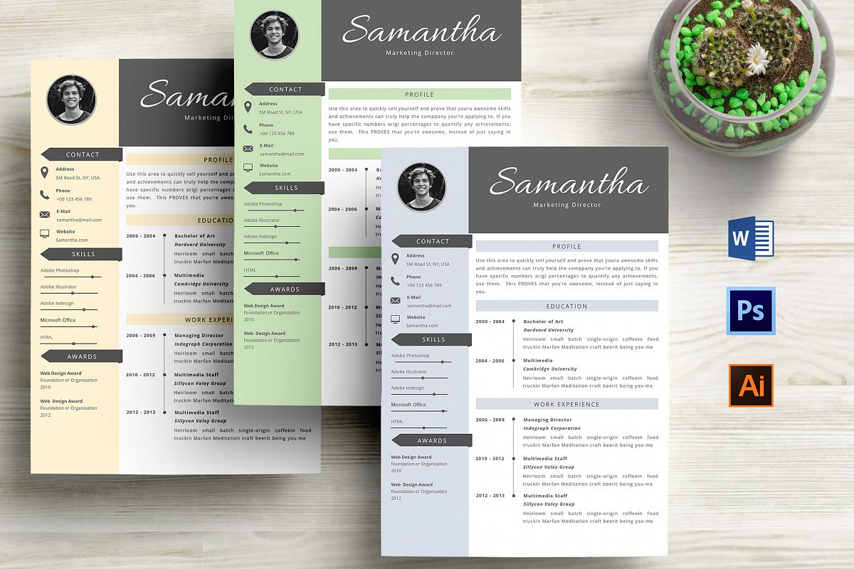 Creative Cv Resume Template Word By Pro  Design Bundles