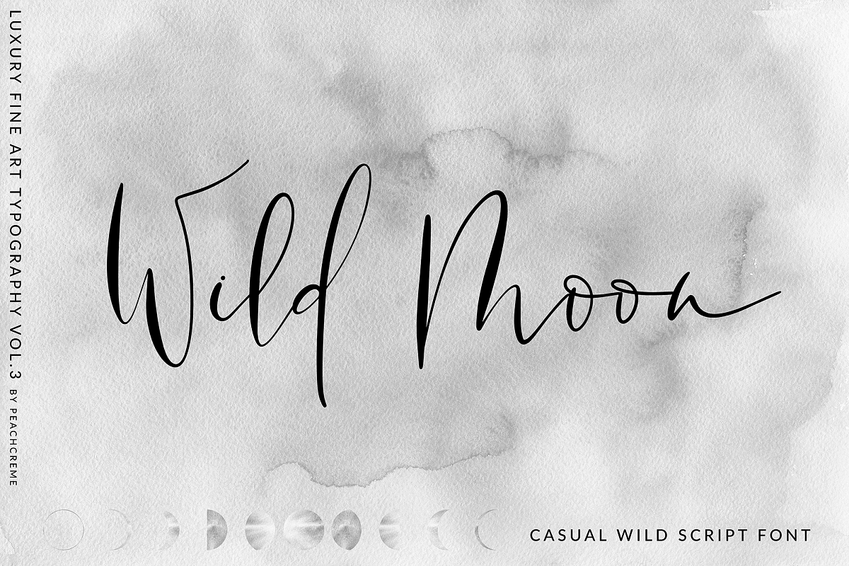 Wild Moon - Casual Script Font example image