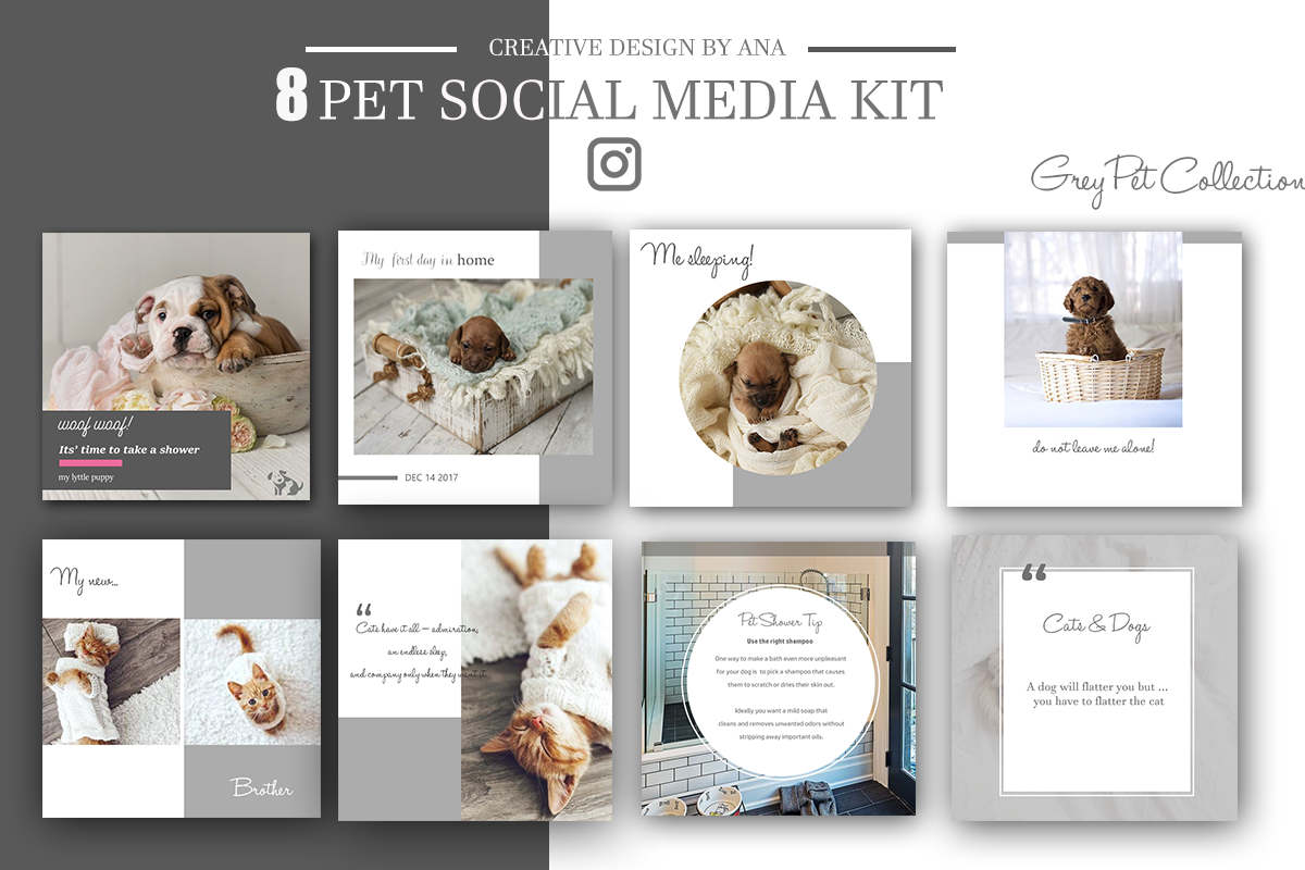 pet social media kit template social m design bundles. Black Bedroom Furniture Sets. Home Design Ideas