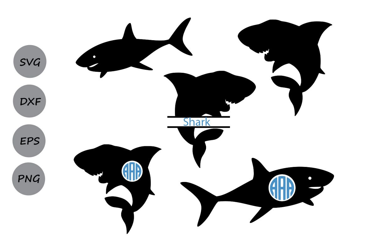 Shark svg silhouette shark monogram sv Design Bundles