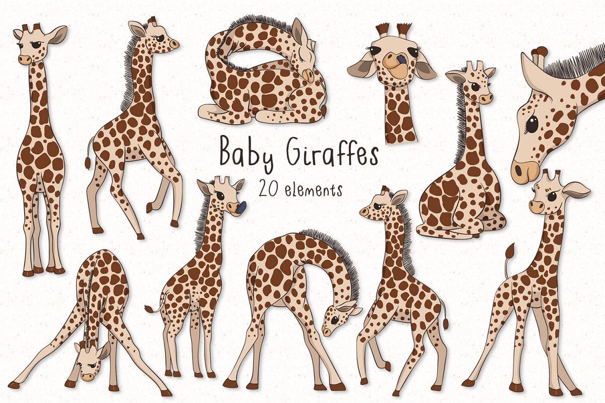 Baby Giraffes example image
