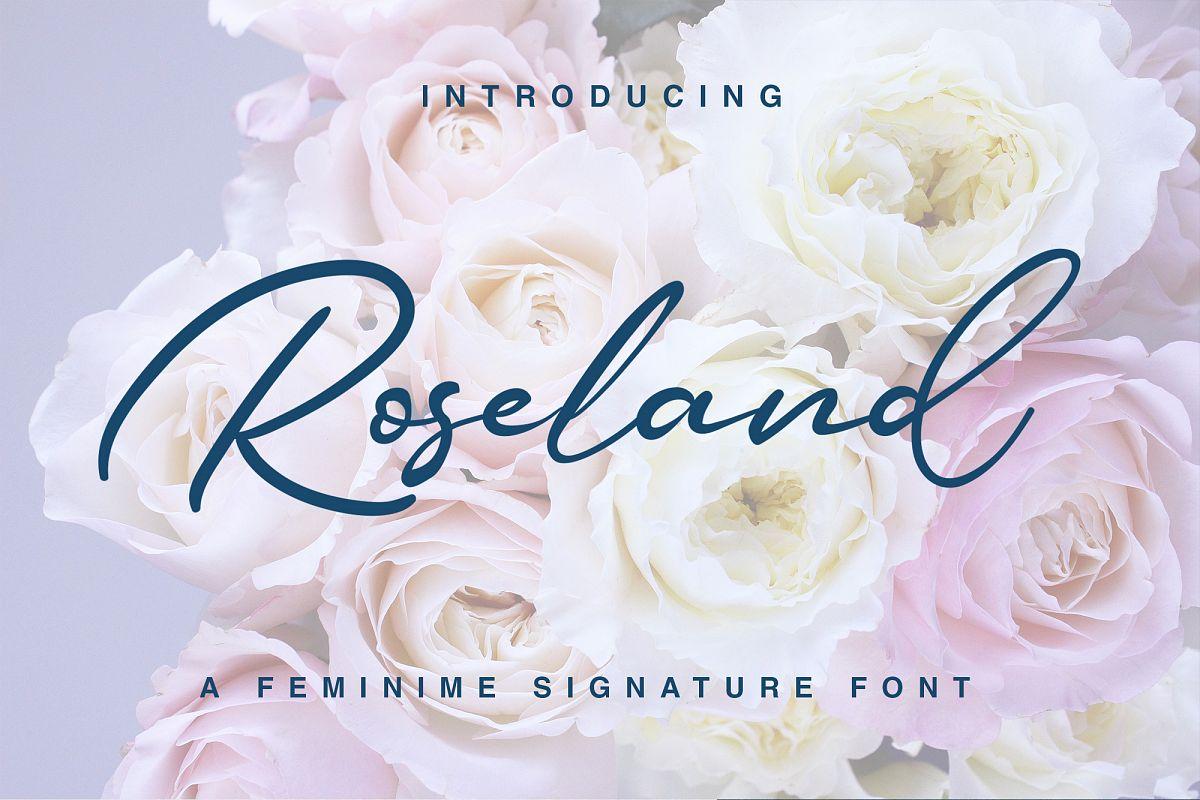 Roseland example image