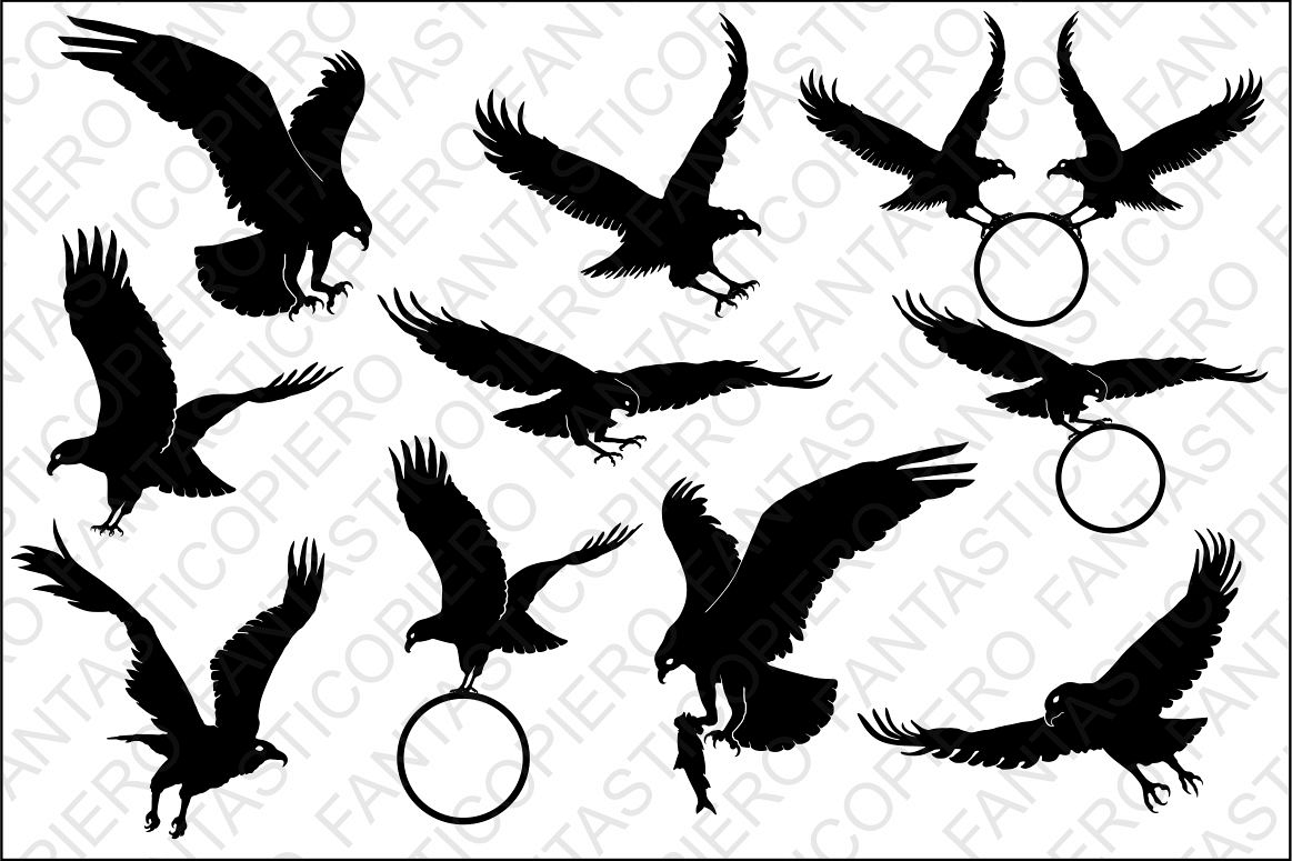 bald eagle svg files for silhouette cam design bundles rh designbundles net native american eagle clipart american bald eagle clipart