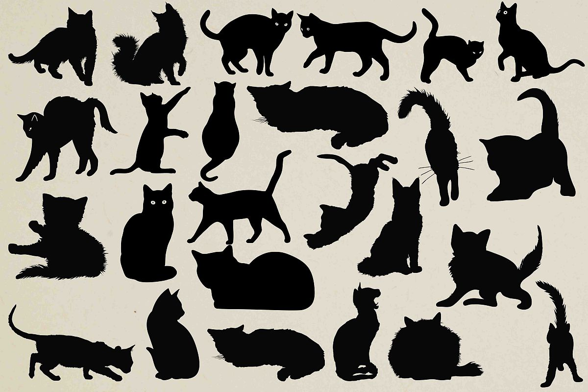 Cats Silhouettes example image