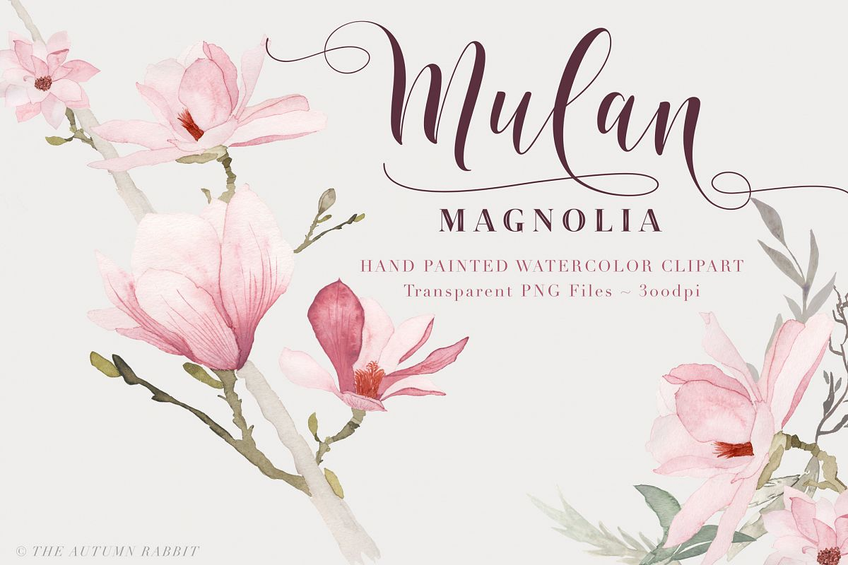 Watercolor Magnolia Floral Clipart example image