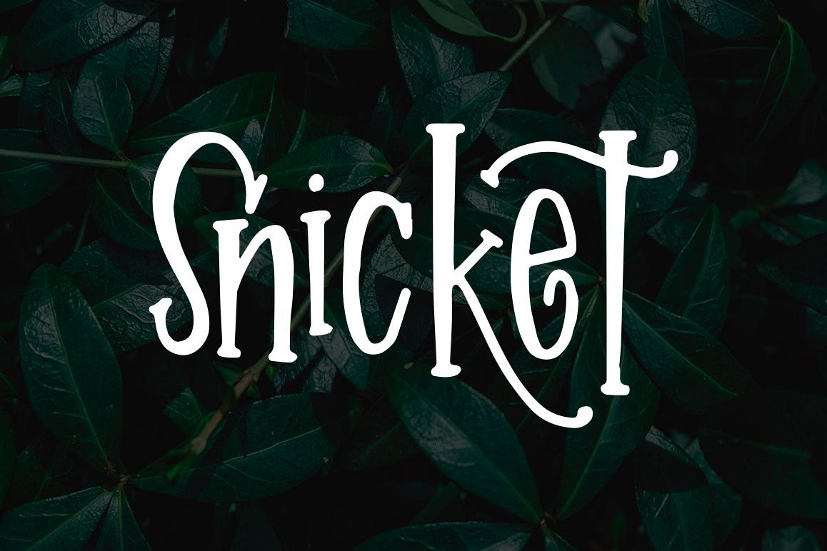 Snicket example image