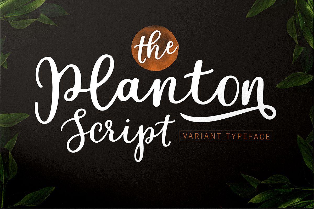 Planton Script example image