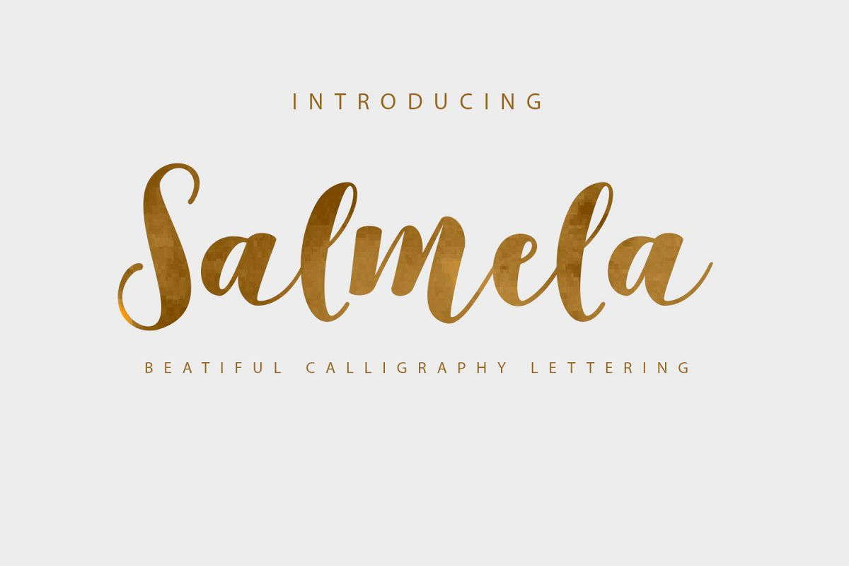 Salmela Script  example image