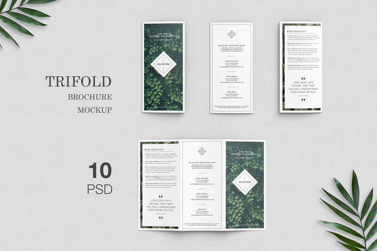 trifold brochure mockup example image