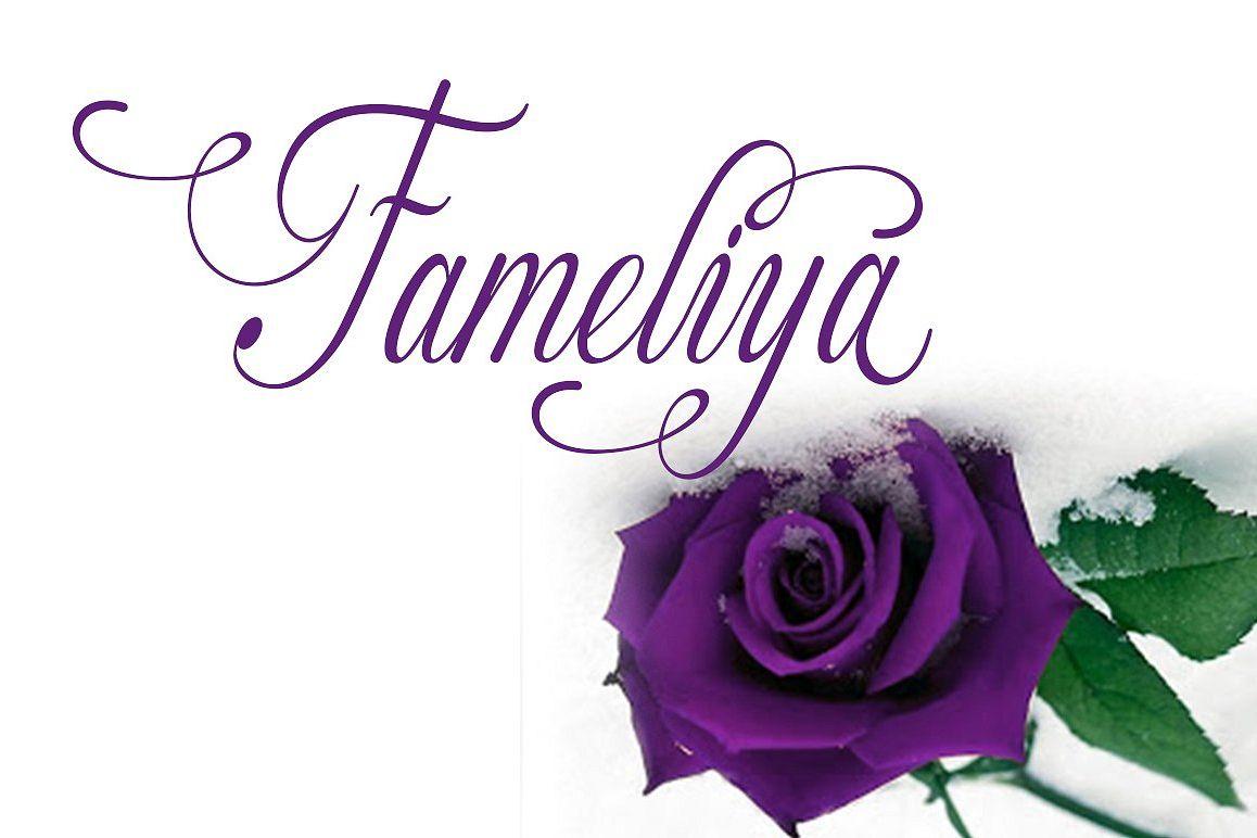 Fameliya example image