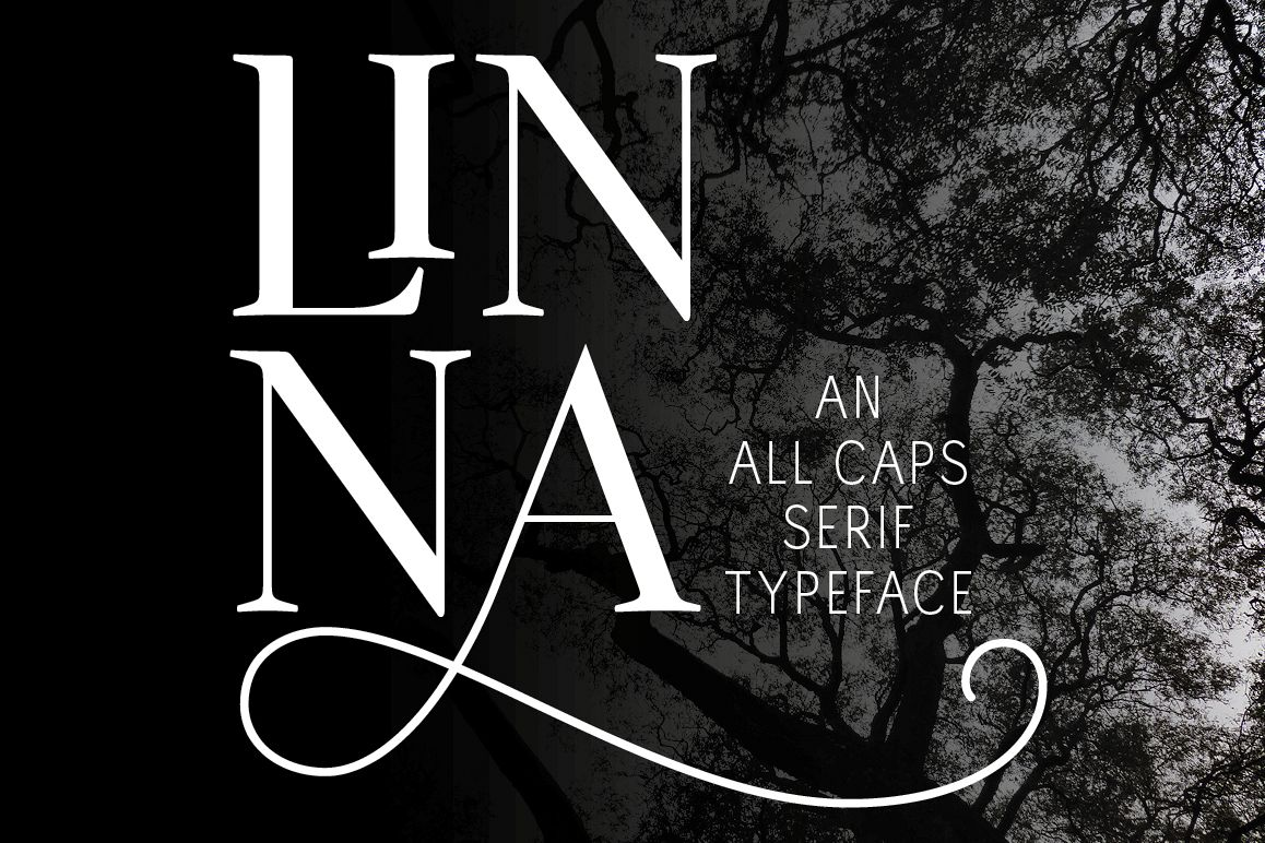 Linna example image