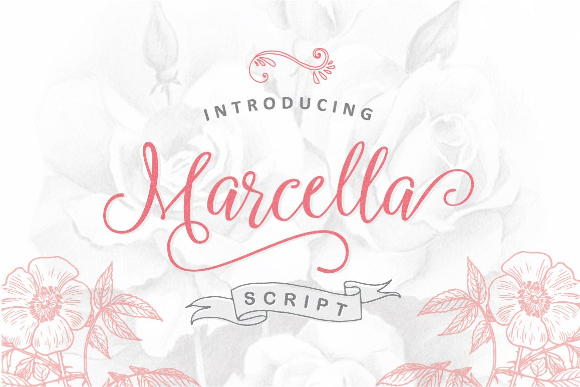Marcella Script example image