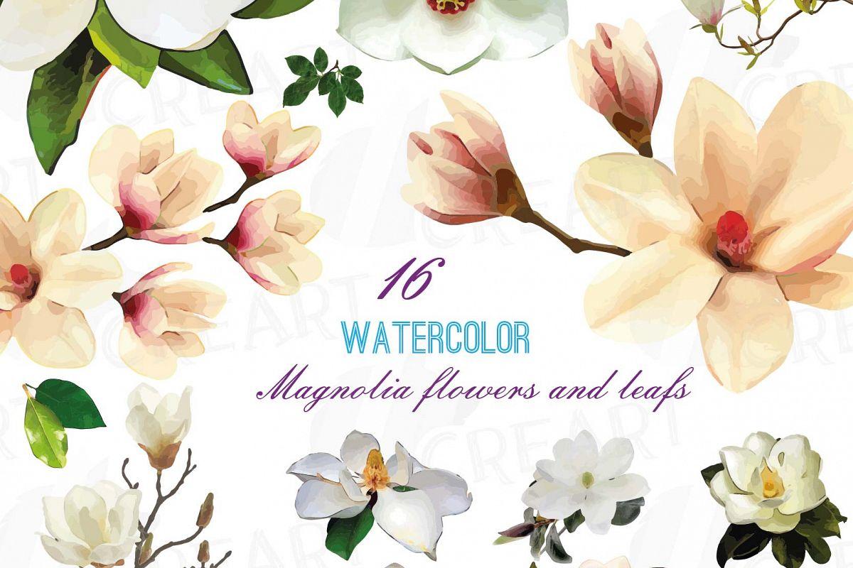 Watercolor White Magnolia Flowers And L Design Bundles