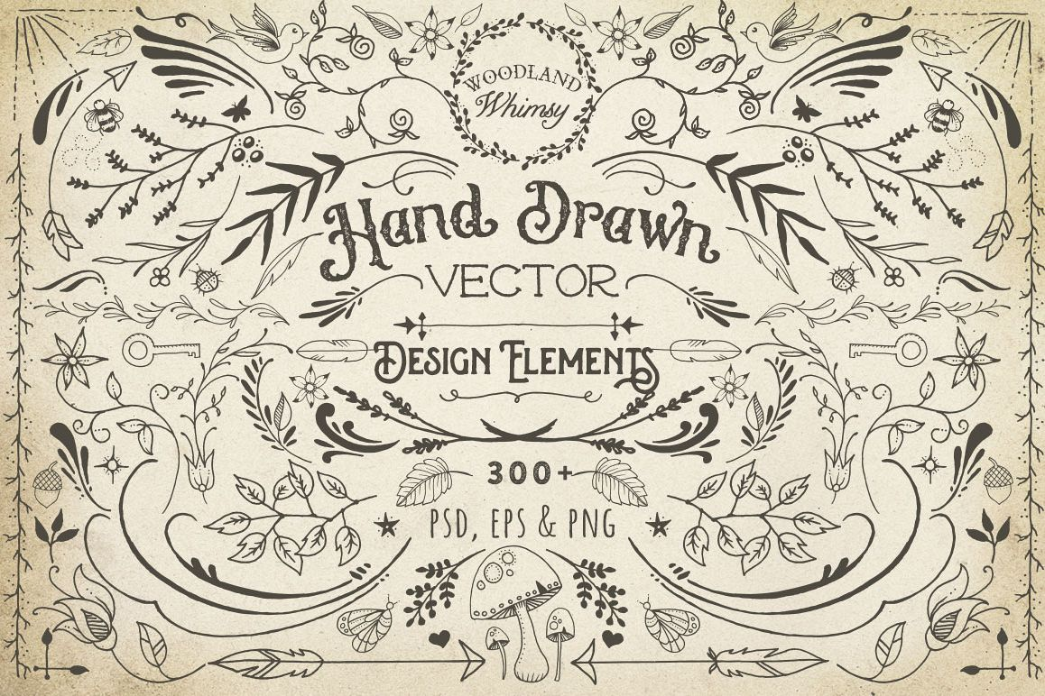 Hand Drawn Vector Design Elements example image