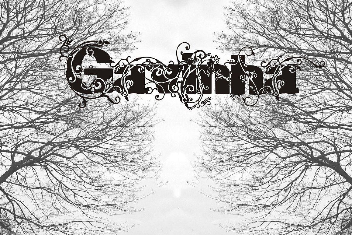Gavinha example image